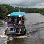 Orangutan Tours with Klotok